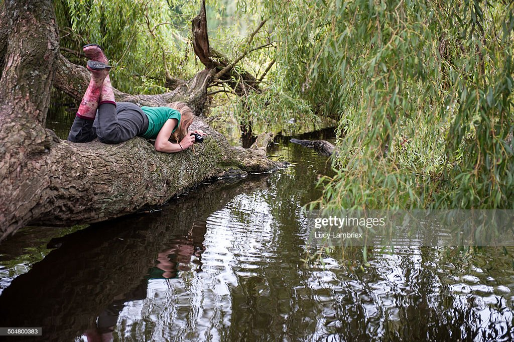 Young woman in fallen tree, taking photos : Stockfoto