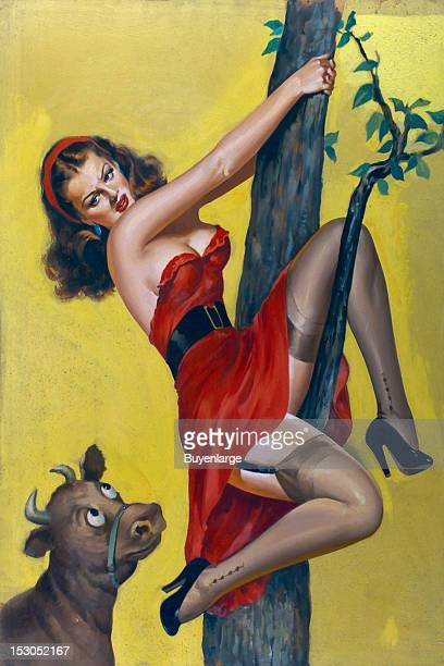 Young woman in high heels is chased up a tree by a bull late 1940s By Peter Driben