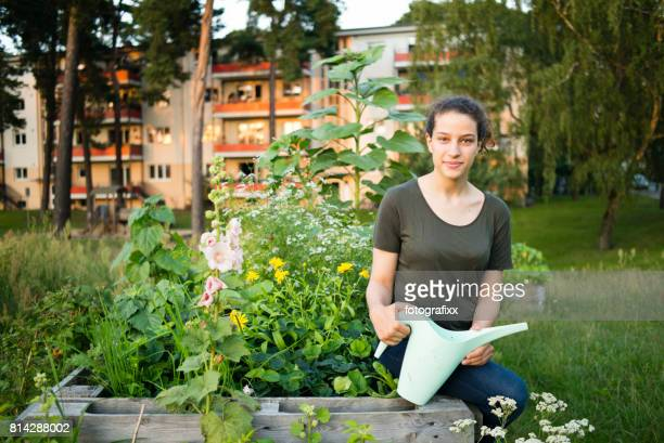 young woman in organic urban gardening project at raised bed - urban garden stock photos and pictures