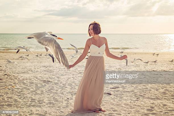"young woman in prom dress on the beach with birds. - ""martine doucet"" or martinedoucet stock pictures, royalty-free photos & images"