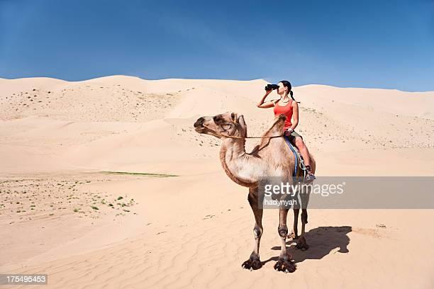junge frau schaut durch ein fernglas auf dem kamel - camel active stock-fotos und bilder