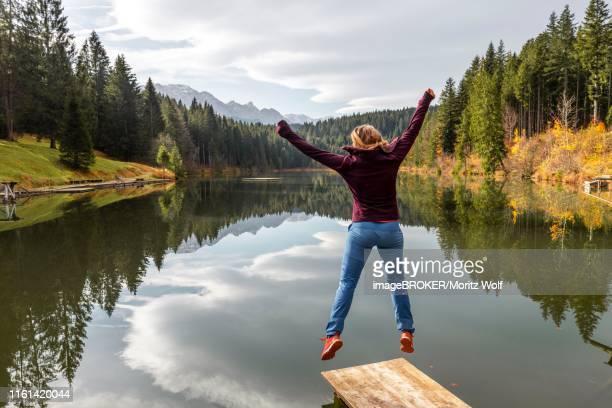 young woman jumps into the air, autumn at grubsee, near kruen, karwendel, upper bavaria, bavaria, germany - krün stock-fotos und bilder