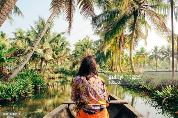 young woman kayaking through the backwaters of monroe island - impressionante foto e immagini stock