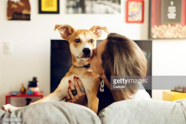 jovem beijando seu cachorro - filhote de cachorro - fotografias e filmes do acervo