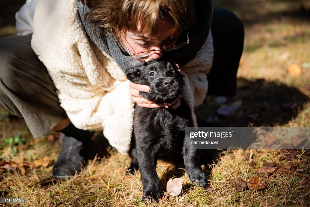 Young woman kissing purebred flat-coated retriever puppy. : Stock Photo