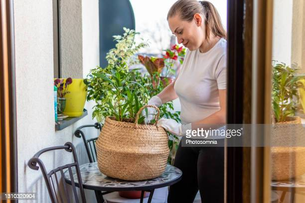 young woman landscaping and rearranging plants in her balcony garden - moment of silence stock pictures, royalty-free photos & images