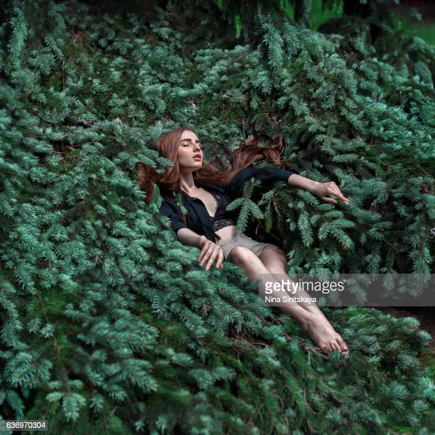 young woman laying down in pine, surreal - emerald green stock pictures, royalty-free photos & images