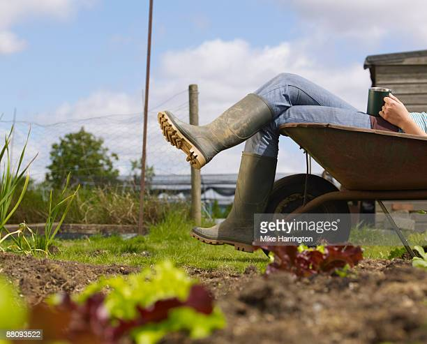 Young woman laying in wheelbarrow with coffee