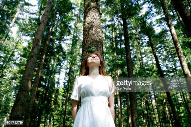 young woman leaning against tree in forest - naturens skönhet bildbanksfoton och bilder