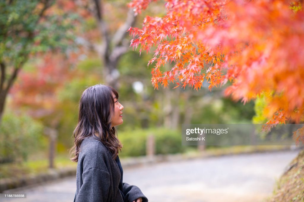 Young woman looking at orange autumn leaves in public park : Stock Photo