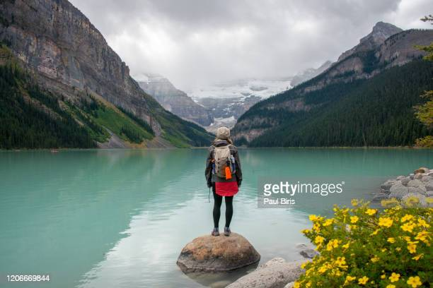young woman looking away at the turquoise lake lousie, banff national park, canada - lake louise stock pictures, royalty-free photos & images