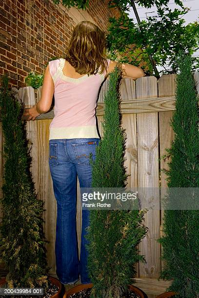 Young woman looking over wooden fence, rear view