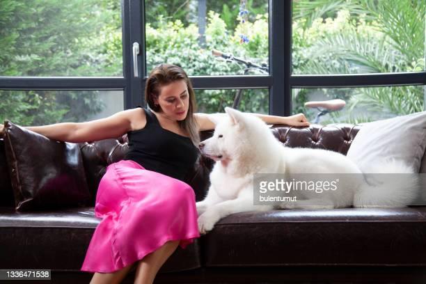 自宅で彼女の犬を愛する若い女性 - 八幡平市 ストックフォトと画像
