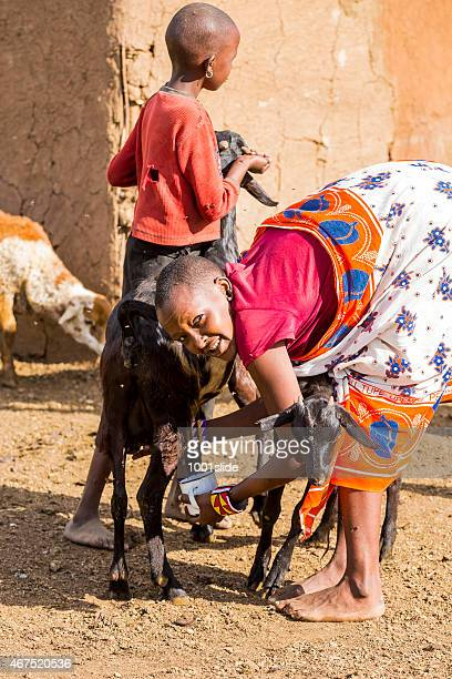 Young woman milking in the old-fashioned way