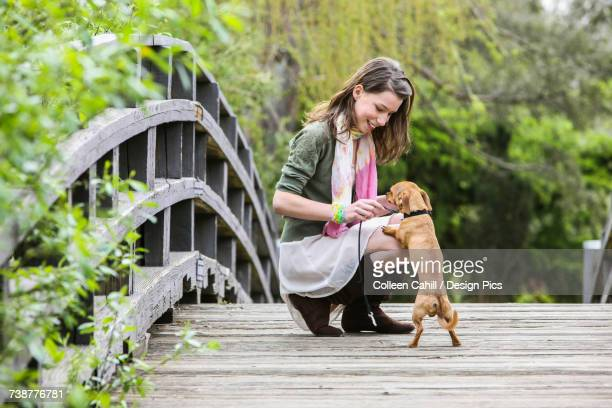 a young woman on a wooden bridge with her small dog - up the skirt pics stock pictures, royalty-free photos & images