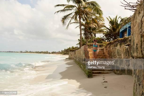 young woman on beach - tropical tree stockfoto's en -beelden