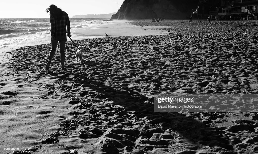 Young woman on beach with her dog : Foto de stock