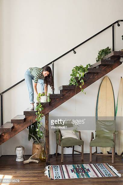 young woman on stairs in a loft caring for potted plant - hausdekor stock-fotos und bilder