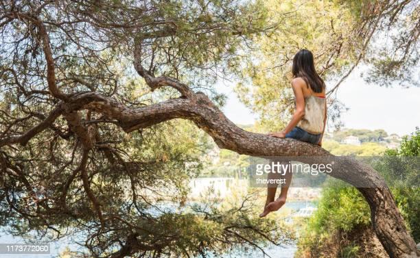 jeune femme sur l'arbre regardant à la mer - beauté naturelle personne photos et images de collection