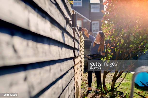 young woman painting garden fence in the sun - renovation stock pictures, royalty-free photos & images