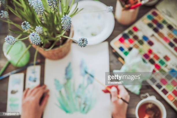 young woman painting plants with water colors - grape hyacinth stock pictures, royalty-free photos & images