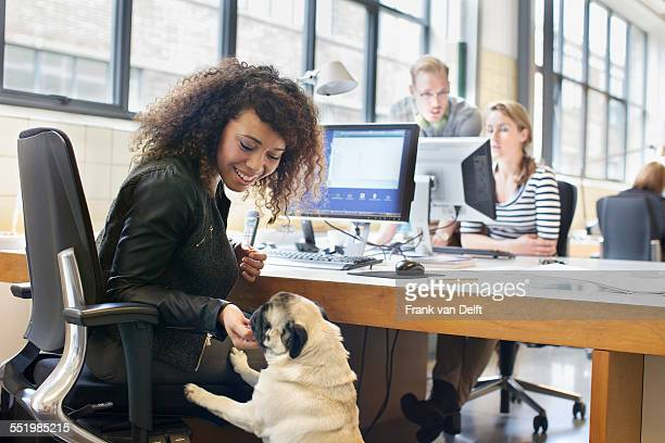 Young woman petting dog at office desk