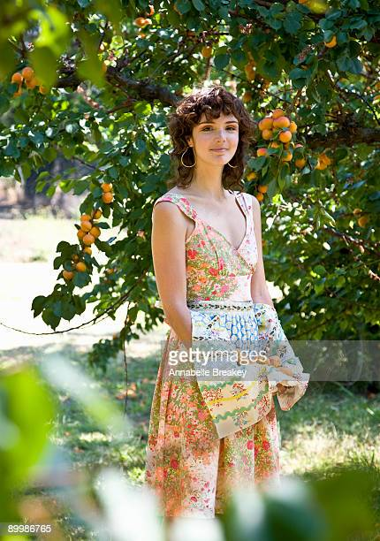 young woman picking fresh apricots in orchard - apricot tree stock pictures, royalty-free photos & images