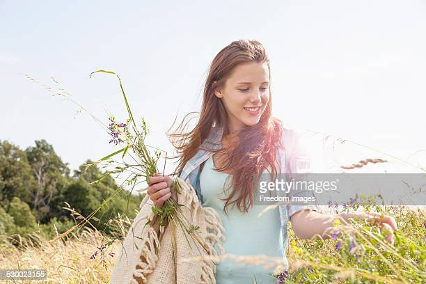 Young woman picking fresh wildflowers in field