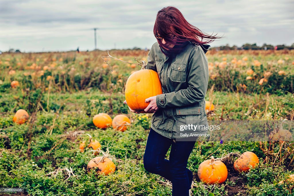 Young woman picking pumpkins : Stock Photo