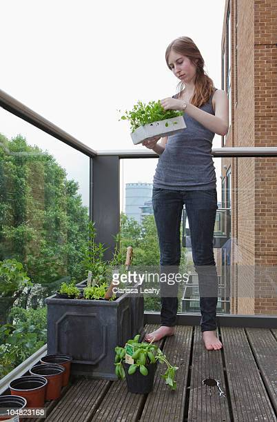 Young woman planting out seedlings