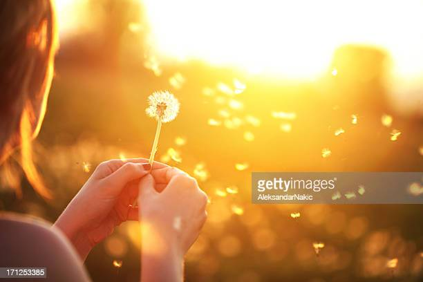 Young woman playfully blowing a dandelion