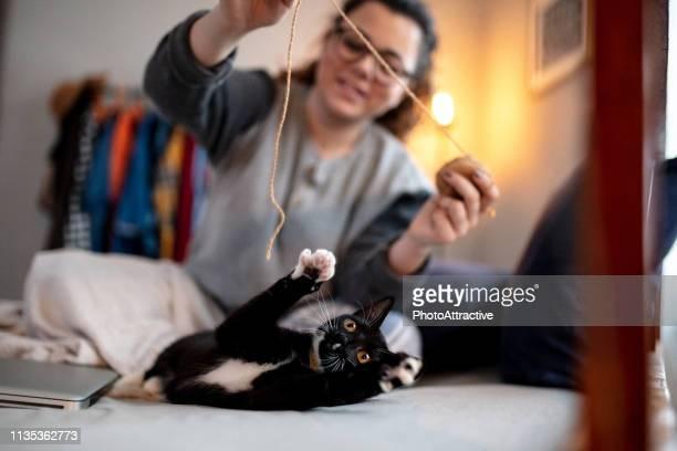 giovane donna che gioca sul letto con il suo gatto - soltanto un animale foto e immagini stock