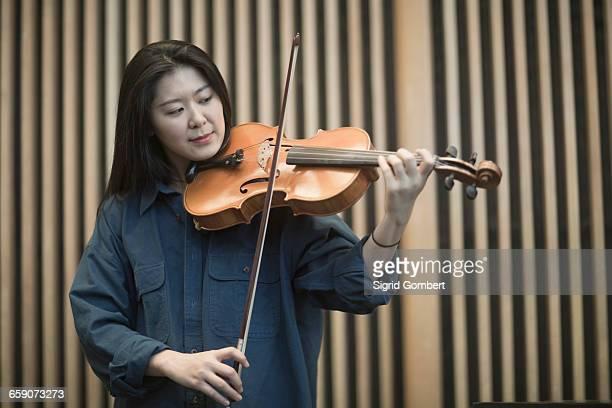 young woman playing violin, freiburg im breisgau, baden-württemberg, germany - sigrid gombert fotografías e imágenes de stock