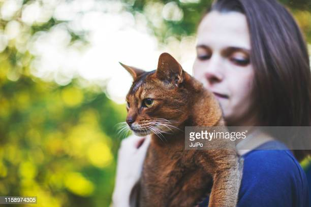 young woman playing with cat - purebred cat stock pictures, royalty-free photos & images