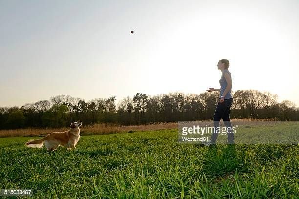 Young woman playing with Golden Retriever on meadow