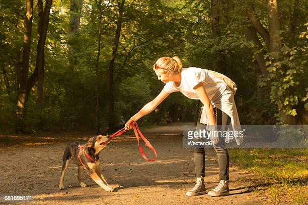 young woman playing with her dog on a forest track - ziehen stock-fotos und bilder