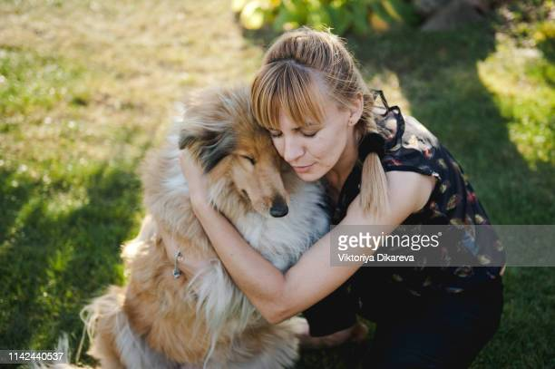 young woman playing with her dog - collie stock pictures, royalty-free photos & images