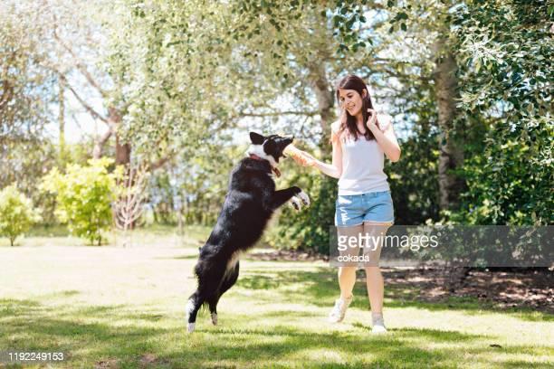 joven jugando con su perro - border collie fotografías e imágenes de stock