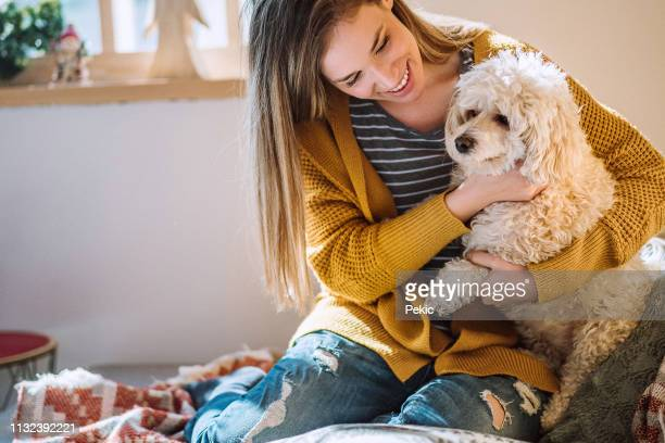 young woman playing with pet at home - pet owner stock pictures, royalty-free photos & images
