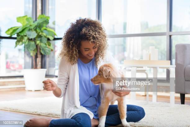 young woman plays with cute dog - obedience training stock pictures, royalty-free photos & images