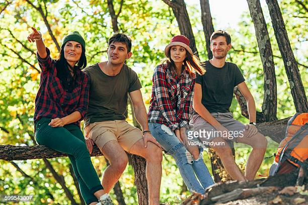 Young woman pointing away while sitting with friends in forest