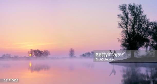 Young woman practicing martial arts at river's edge at dawn