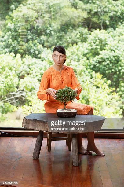 Young woman pruning bonsai tree