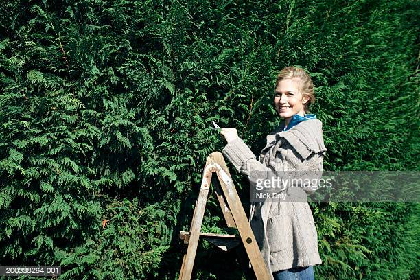 Young woman pruning hedge, smiling, portrait