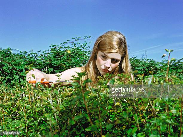 Young Woman Pruning Hedge with Scissors