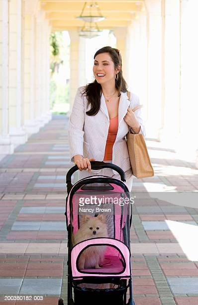 young woman pushing dog in stroller under portico - pushchair stock pictures, royalty-free photos & images