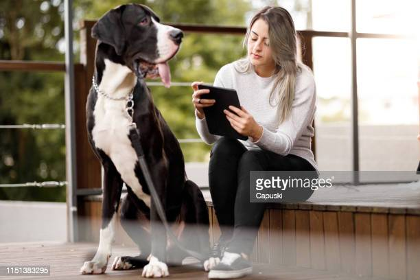 young woman reading e-book with her dog - great dane stock pictures, royalty-free photos & images
