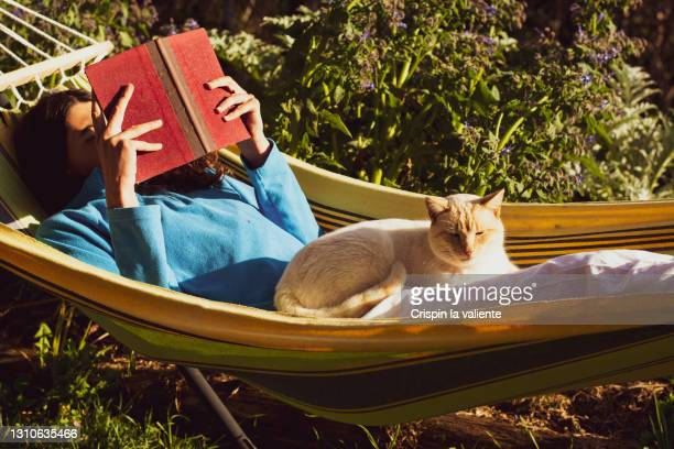 young woman reading with her cat lying in a hammock in the garden - 昼寝 ストックフォトと画像