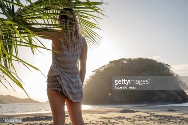 young woman relaxes on sandy beach at sunrise - tropical tree stock pictures, royalty-free photos & images