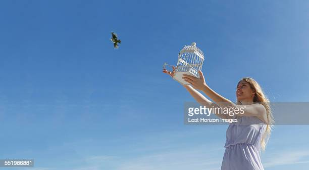 young woman releasing bird from cage toward blue sky - releasing stock pictures, royalty-free photos & images